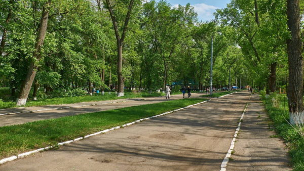 В Александрии продолжат обустраивать новые скверы, а на городские парки денег не хватает