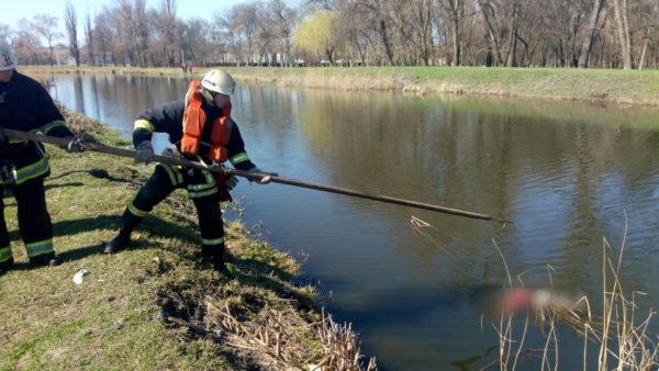 В реке Березовка нашли тело мужчины