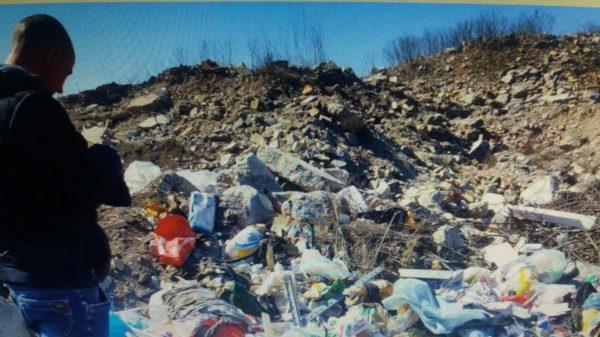 148 александрийцев заплатят штрафы за выброс мусора в неположенном месте
