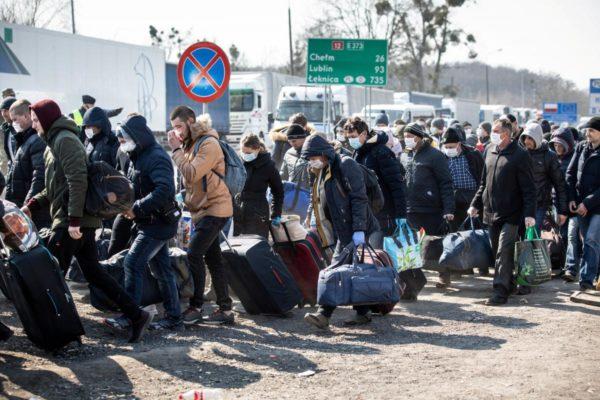 В Александрии зарегистрировано 298 человек, которые вернулись из других стран