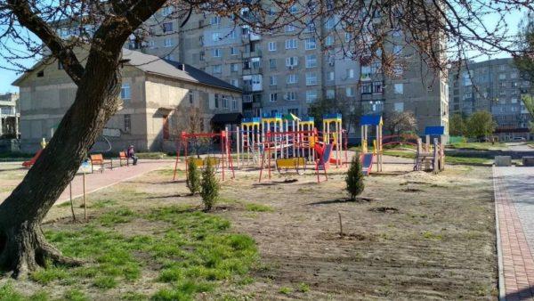 В сквере Памяти Героев АТО выкопали 21 тую и 8 кустов можжевельника