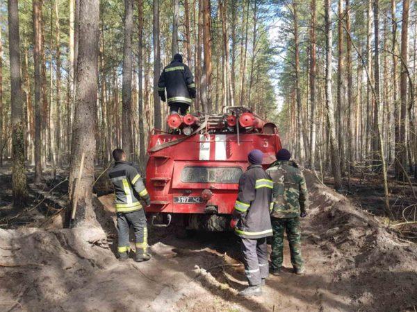 Спасатели Кировоградской области показали, как тушат пожар в лесах Чернобыля (ВИДЕО)
