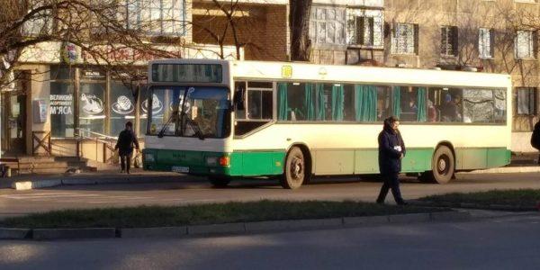 В Александрии возобновили работу городские автобусы с льготными рейсами