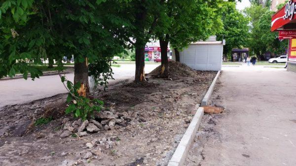 В Александрии вандалы продолжают портить деревья