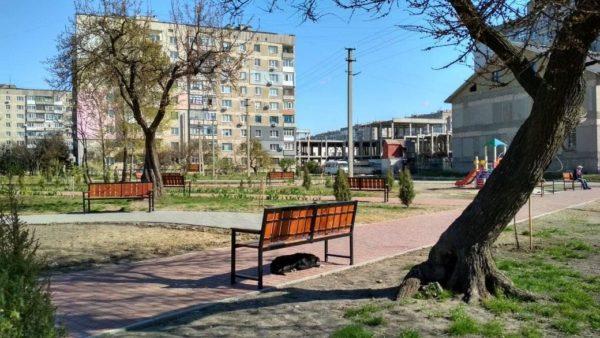 В сквере Героев АТО снова испортили деревья