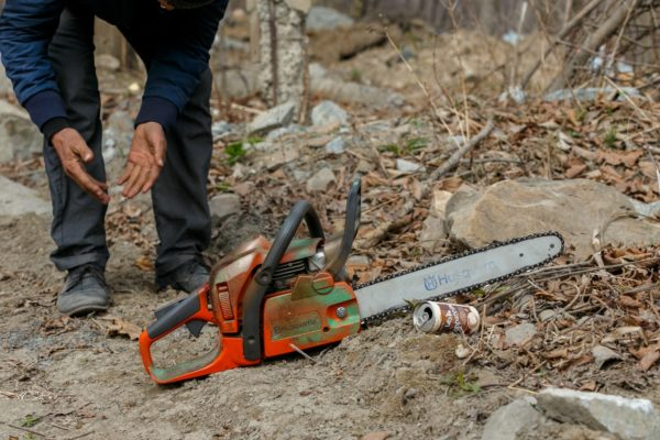 За спил акаций жителю Александрийского района грозит уголовная ответственность