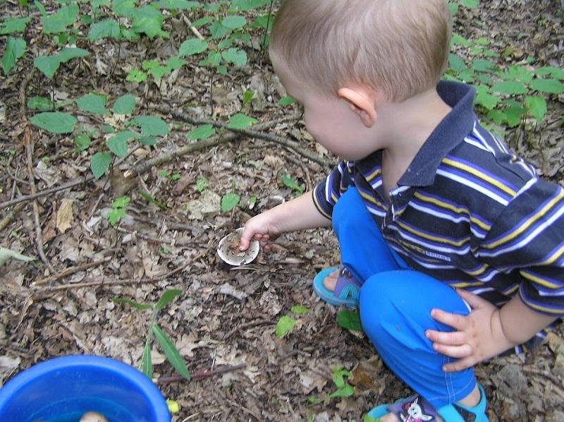 В Александрии еще один ребенок отравился грибами