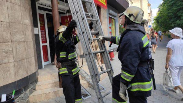 В Александрии котенок застрял на крыше магазина