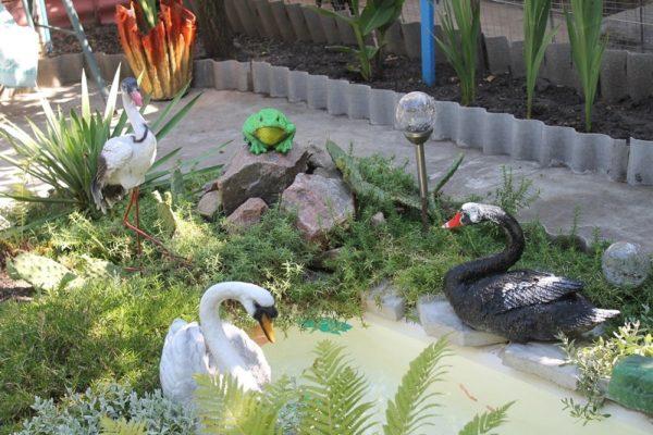 Всего 10 частных дворов Александрии подали заявки на участие в конкурсе на лучшую усадьбу