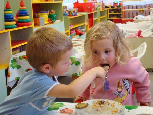 В александрийских школах и детских садах увеличится стоимость питания