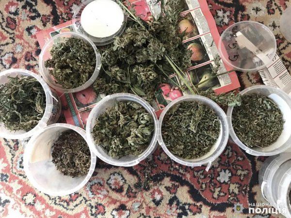 У 40-летнего александрийца изъяли более полусотни кустов конопли и пакетики с наркотиками (ФОТО)