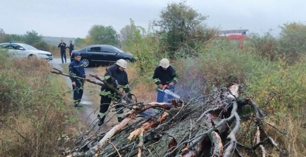 Александрийские спасатели ликвидируют последствия непогоды (ФОТО)