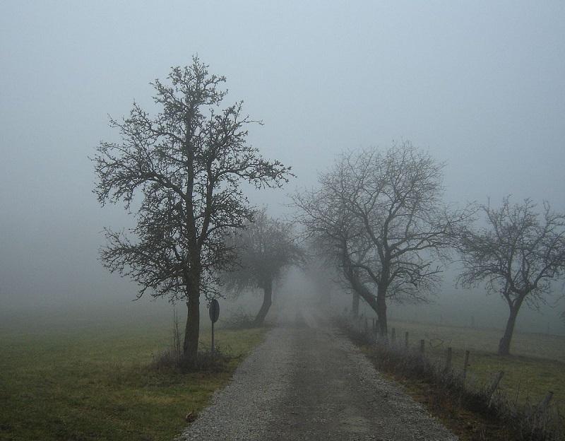 Жителей Кировоградской области предупреждают о тумане