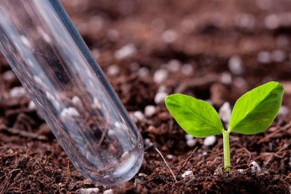 Где сделать агрохимический анализ почвы в Украине