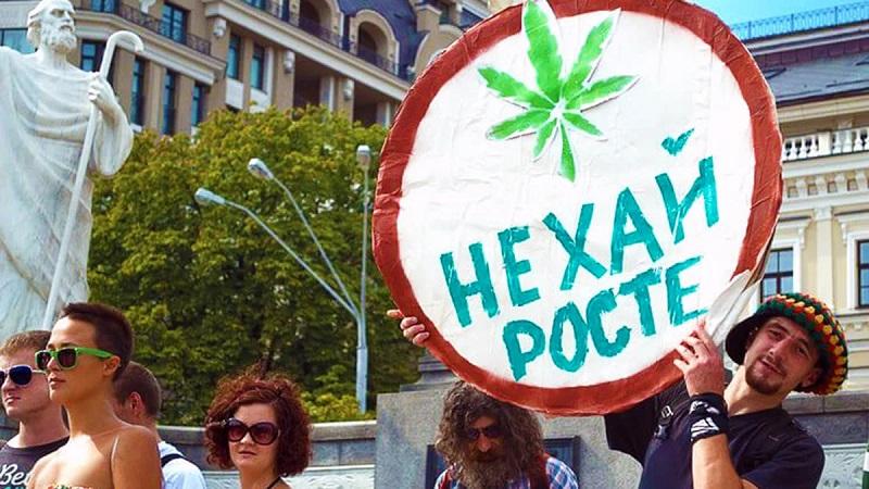 Украинцы проголосовали за легализацию каннабиса в медицинских целях