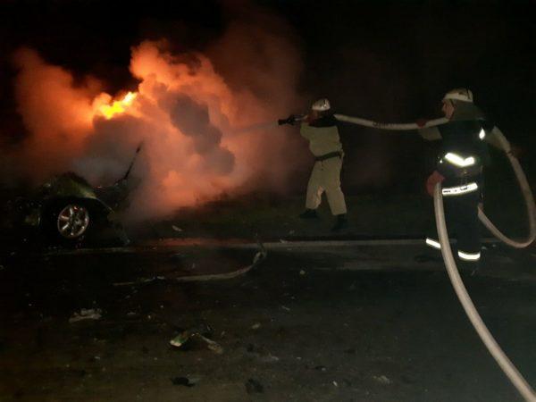 В Александрийском районе на трассе горела иномарка