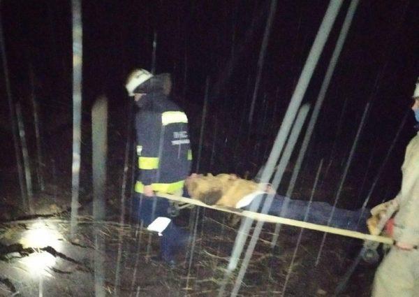 В больницу Александрии госпитализировали 39-летнего мужчину, который упал с железнодорожного моста (ФОТО)