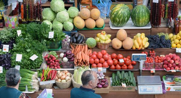 Сын александрийского депутата на бесконкурсной основе выигрывает тендеры на поставку овощей в детские сады с ценами выше рыночных