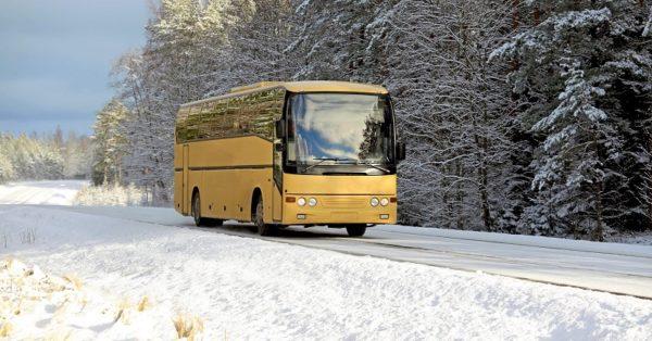 На автобусном маршруте №17 ввели дополнительные льготные рейсы