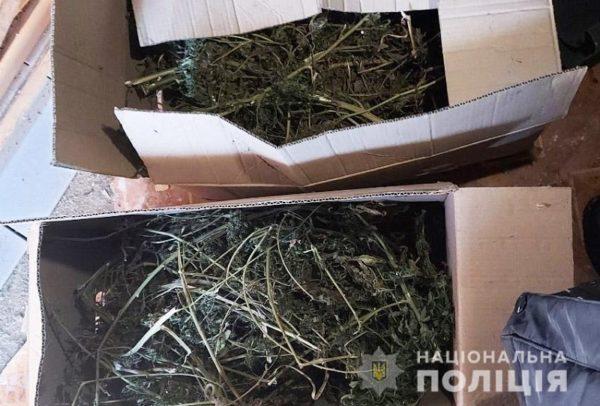 У александрийца полицейские изъяли около 5 килограммов конопли (ФОТО)