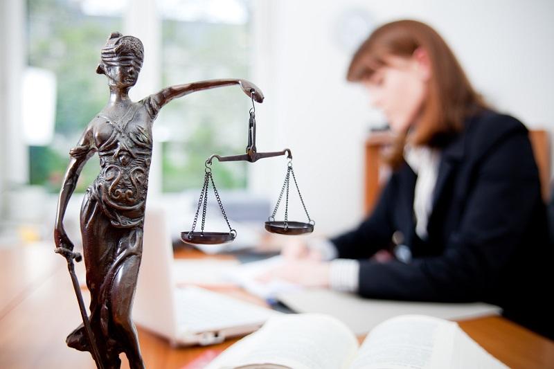 Где александрийцы могут получить бесплатную правовую помощь?