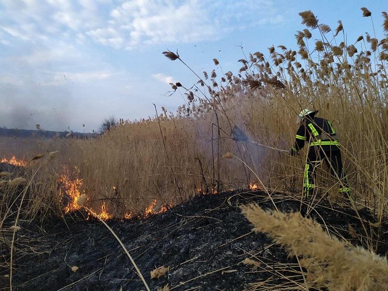 Александрийские спасатели потушили возгорание 300 квадратных метров сухой растительности (ФОТО)
