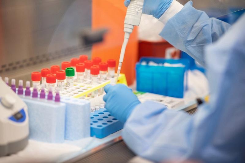 За три дня коронавирус диагностировали у 54 александрийцев