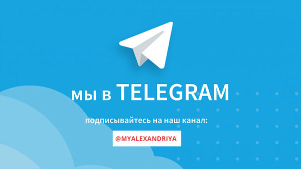 Новости Александрии в Telegram