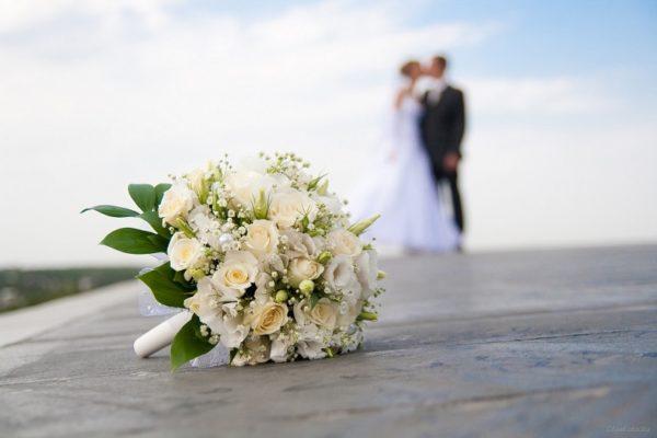 За три месяца этого года в Александрии и районе зарегистрировали 109 браков. Самой юной паре 17 и 24 года