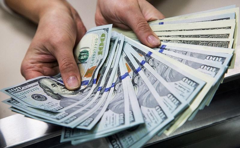 40-летнюю жительницу Кировоградской области подозревают в организации финансовой пирамиды на 100 тысяч долларов