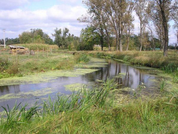 В 20 миллионов гривен обойдется очистка русла реки Бешка в Александрийском районе