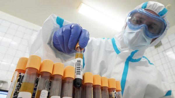 В Александрии 333 больных коронавирусом, два человека умерли от COVID-19