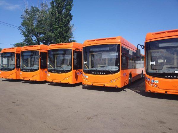 Из александрийского бюджета выделили деньги на покупку 5 автобусов и на ремонт Новопражского шоссе