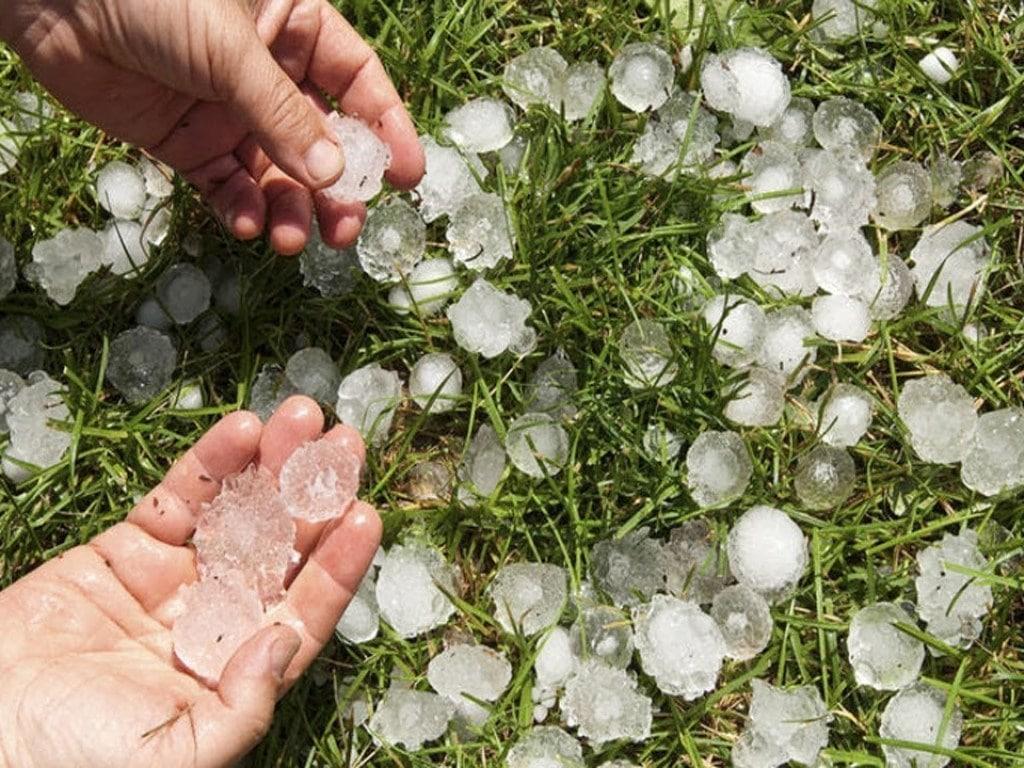 В Кировоградской области прогнозируют грозы, дожди и град