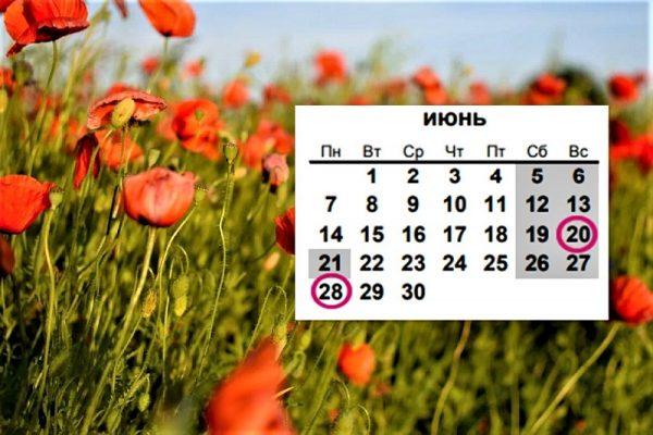Сколько в июне будет праздничных и нерабочих дней
