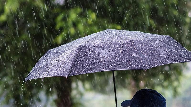 В Кировоградской области прогнозируют дождь с грозой