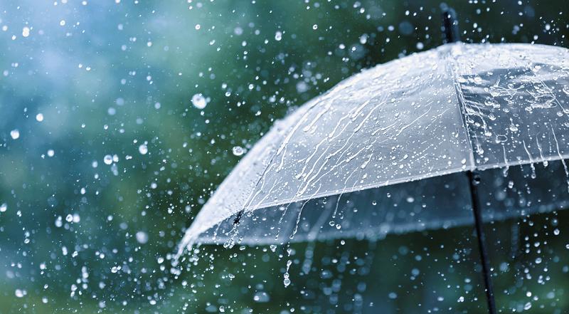 В Кировоградской области синоптики прогнозируют дожди
