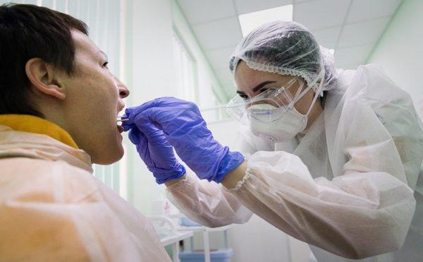 За сутки 24 александрийцам сделали ПЦР-тесты на коронавирус